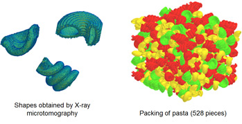 Shapes obtained by X-ray microtomography / Packing of pasta (528 pieces)